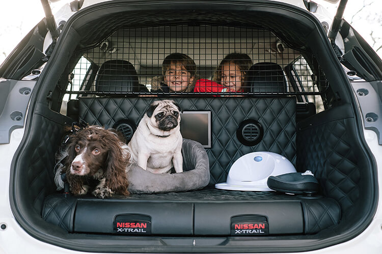 Concept SUV for the pet lovers
